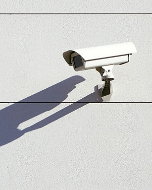 Security Surveillance_edited.jpg