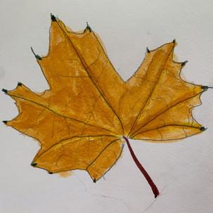 watercolour leaf.jpg