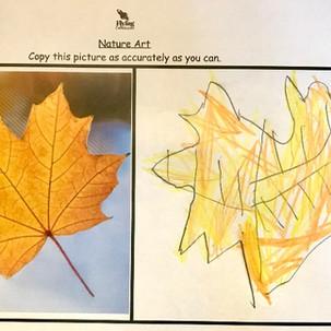 Leaf Sketch2.jpg