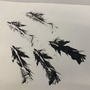 Feather Monoprinting.jpg