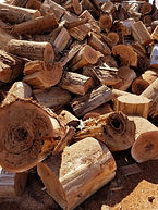 biomass 2.jpg