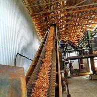 Wood chips 2.jpg