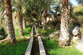 Misfat al abreyeen - Oman.jpg