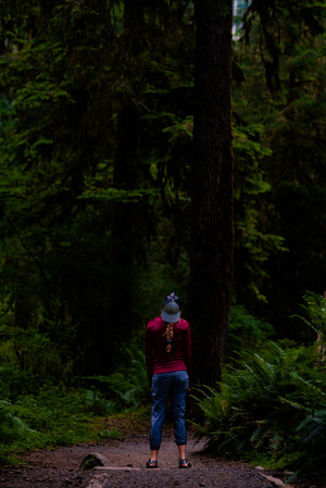 Standing in a forest of big trees. Hoh Rainforest, Washington