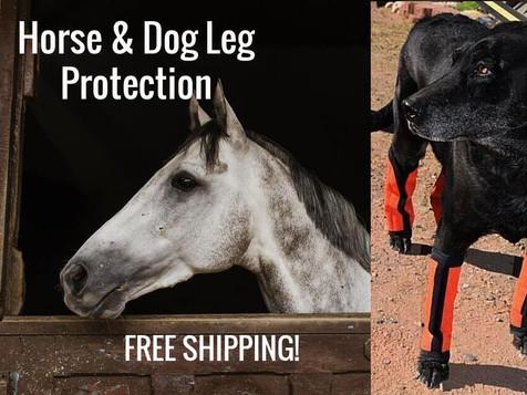 The World's Most Astonishing Dog Leggings