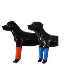 Sassari Dog Leggings.jpg