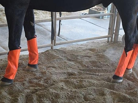 Product Review Sassari Fly Leggings
