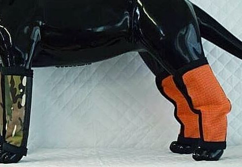Impressive Leggings for Horse and Dogs