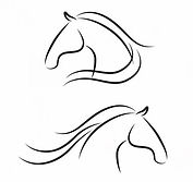 Horse drawing.JPG
