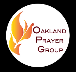 New OPGroup logo.png