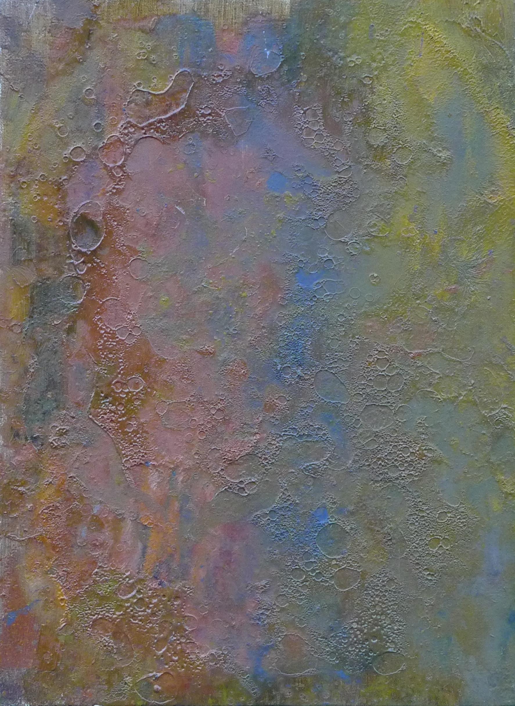 f.2010.oil on canvas.11.5x16.JPG