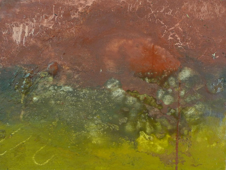 o.2010.oil on canvas.11.5x16.JPG