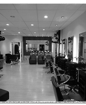 salon pic abbey meads_edited.png