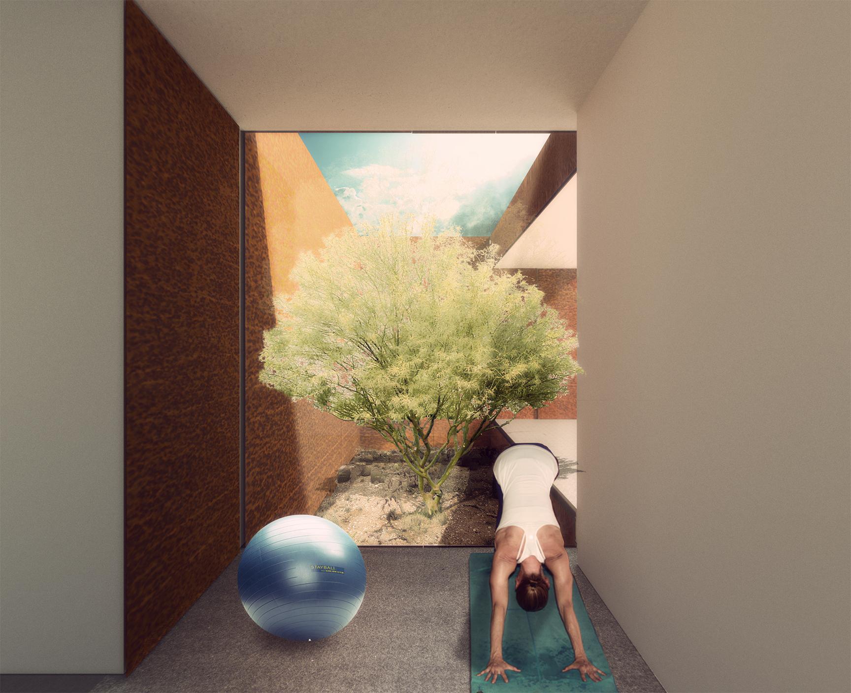 13 Desert Bridge Residence - Chen + Suchart Studio.jpg