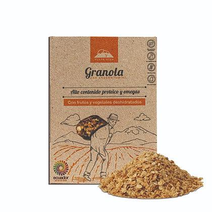 Granola con Proteina de Chocho 250gr Allpa Viva