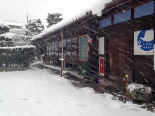 記録的な大雪!