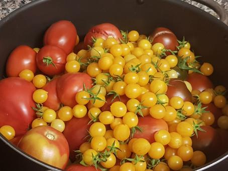 Hast du auch Tomaten im Überfluss?