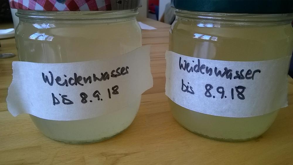 Selbstgemachtes Weidenwasser in Schraubgläsern zum Aufbewahren im Kühlschrank