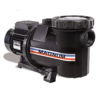 Motobomba Magnum 3 HP, 3 fases
