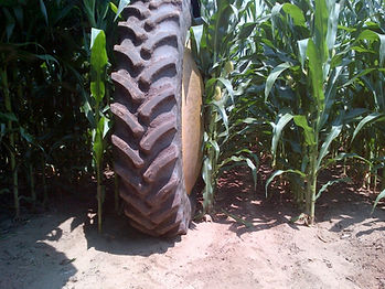 fungicide application, sprayer Hub Covers, wheel shields, customagconcepts, crop dividers, fungicide application,crop damage, ontario