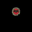 bacardi-3-logo-png-transparent.png