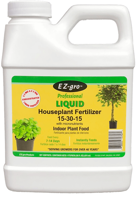 House Plant c (Medium).png
