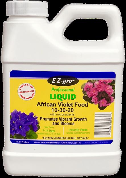 African Violet c (Large) (1).png