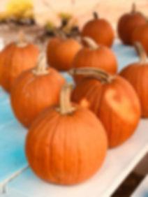 Marion Mulch & More - Fall Pumpkins | © Reverie Design