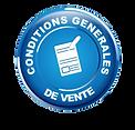 _wp-content_uploads_2019_12_cgv_logo_764