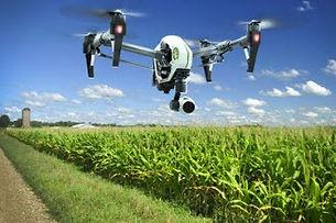 agriculture_tn.jpg