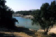 Vaux-sur-Mer_47296_plage-du-Conseil.jpg
