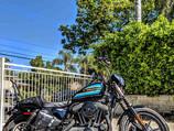 Sportster 1200 PlunderDog saddlebags Florida