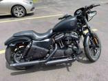 ISportster Iron 883 PlunderDog Saddlebags