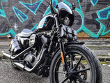 Sportster 1200 PlunderDog saddlebags, toolbag, fork covers, grip& lever covers