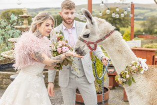 Wedding flowers - pastel meadow theme, hand-tied bouquet, boutonniere and llama collar