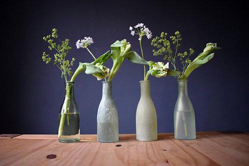 Decorative Glass Vases (Set of 4)