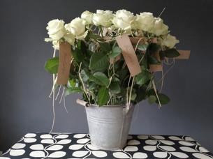 Funeral flowers - individual memorial roses