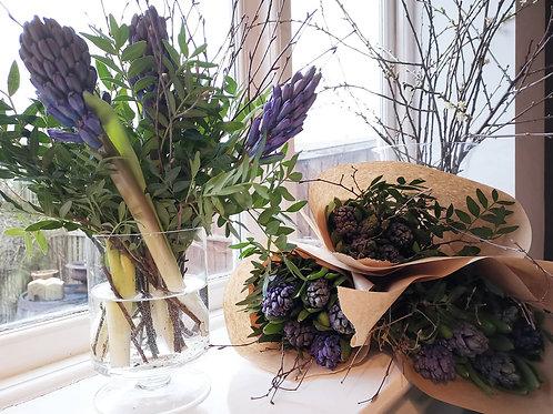 Hyacinth Bundle