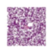 QR code web_ming classics-05.jpg