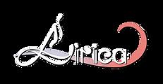 logo_2_2.png