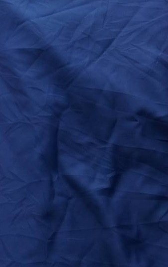 #F8 Plain Blue Fabric