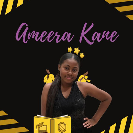 Ameera Kane: Empowerment, Novel-Writing, & A Personalized Course for Writers