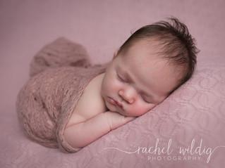 Newborn Session   Adelaide