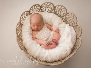 Newborn Session | Stella
