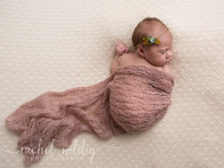 Newborn Session   Lily