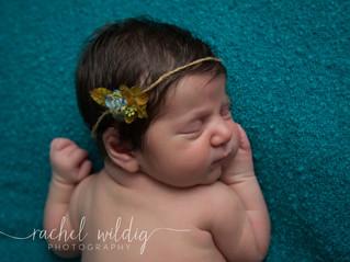 Newborn Session | Tahlia