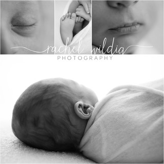 Newborn Session | Macro Details