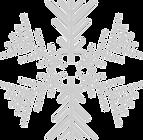 snowflake-1093205_1280.png