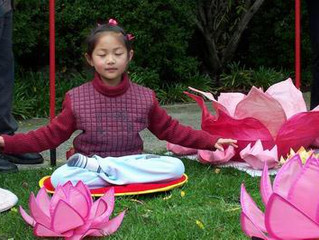 Petals of Peace Launches in Melbourne