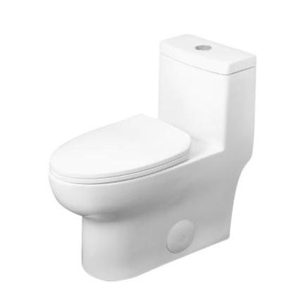 Model #10 ONE PIECE OVAL TOILET WITH SOFT CLOSING SEAT AND DUAL FLUSH HIGH-EFFICIENCY, PORCELAIN, WHITE FINISH, HEIGHT 28-3/4 INCHES (BSN-76)